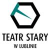 Zobacz referencje wystawione przez: Teatr Stary w Lublinie